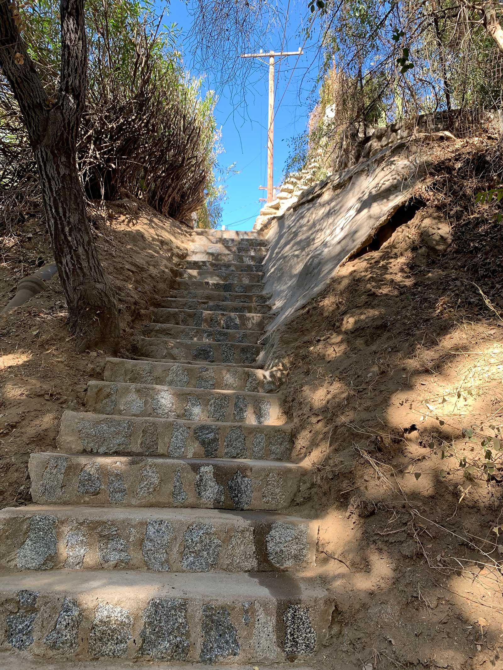 The Chevy Chase Glendale secret stairs after volunteer cleanup.